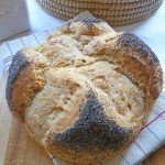 "Pane al farro o pane cubano di ""Back to the Future, Buddies"""