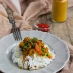 Spezzatino di soia speziato con riso basmati