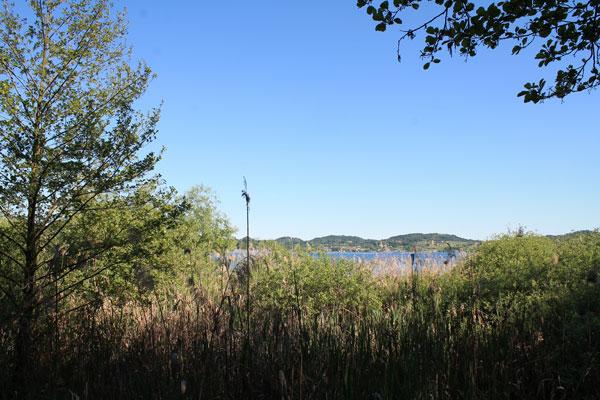 lago-di-viverone